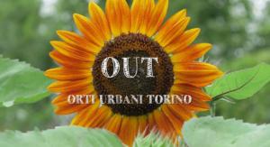 Orti-urbani-Torino